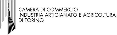 logo_camcom_360